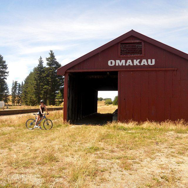 omakau rail trail